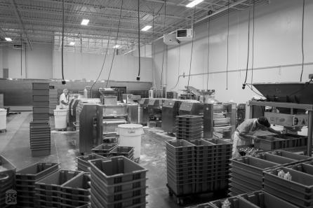 Ciabatta production